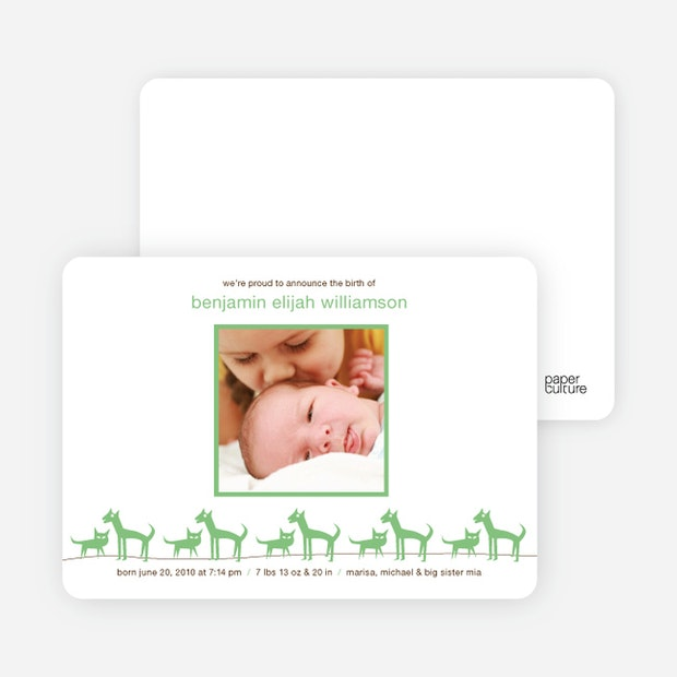 cats and dogs photo baby announcement paper culture
