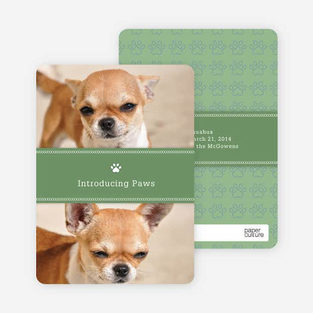 2 Photo Dog Cards - Main
