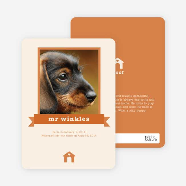 Dog Story Card - Orange