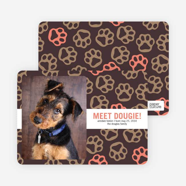Paws-itively Marvelous Dog Cards - Orange