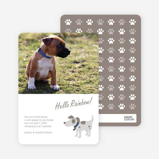 Puppy Dog Paws Pet Cards - Brown