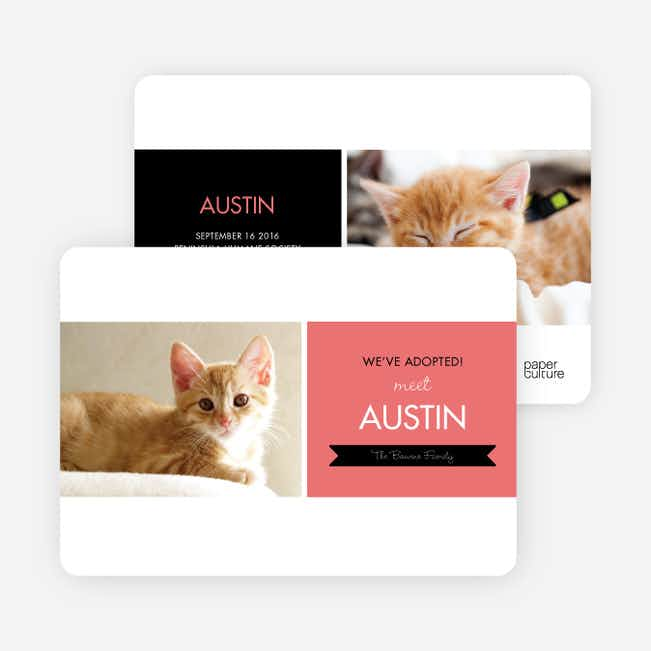 Pet Adoption Cards - Pink