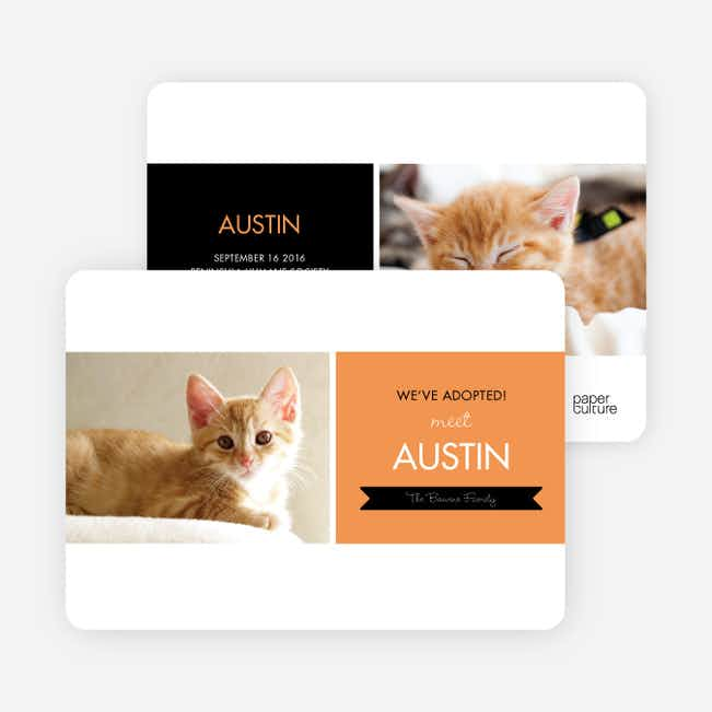 Pet Adoption Cards - Orange