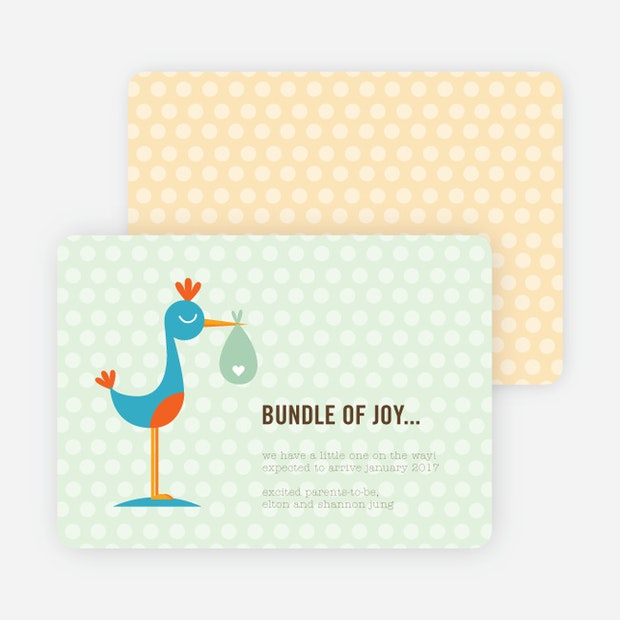 Stanley the Stork Pregnancy Announcement Cards | Paper Culture