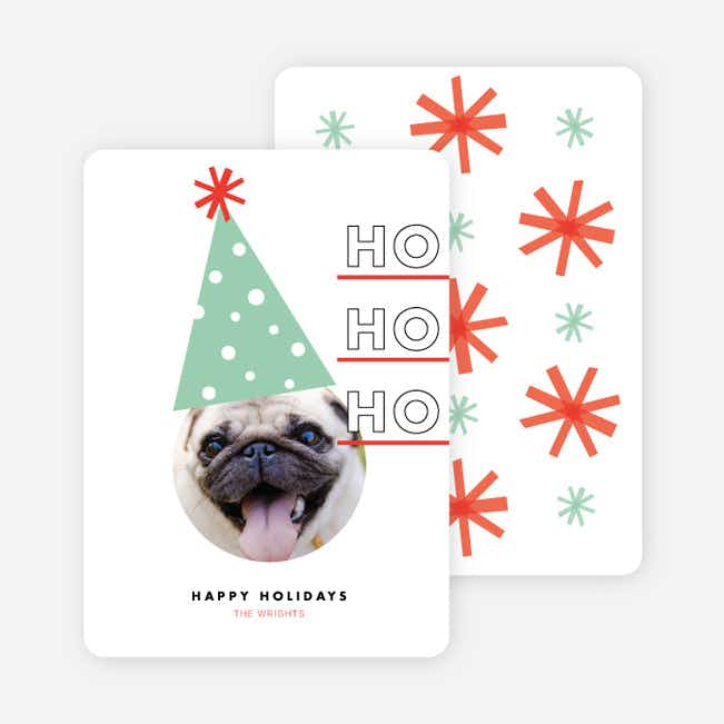 Dog Party Hat Holliday Cards - Green