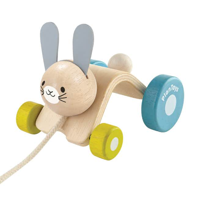 Hopping Rabbit Toddler's Pull Toy - Multi